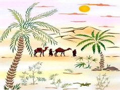 paysage palmier touareg verticalp